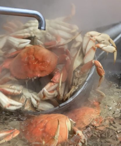 2019 cooked crab e1576544317106