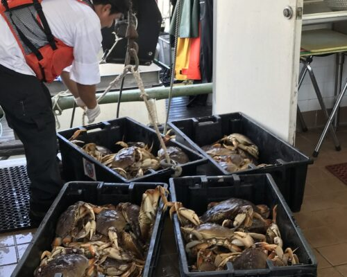 fresh crab loading