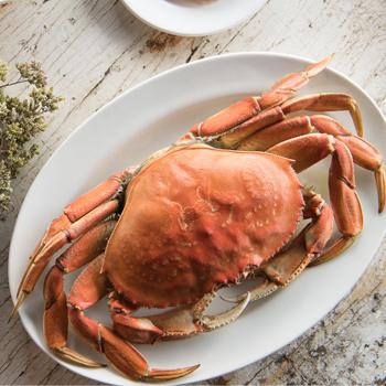 crab jumbo1